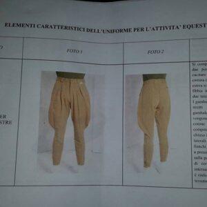 pantalone equitazione